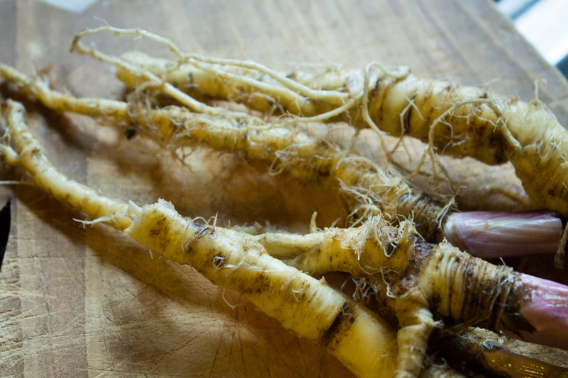 Parsnip' are not very pretty but packed with vitamin C!